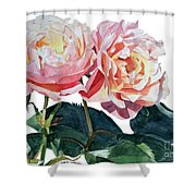 Pink And Yellow Rose Anne Shower Curtain