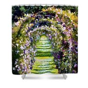 Rose Arch In Summer Sunshine Shower Curtain