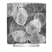 Rose Clippings Mural Wall 2 - Black And White Shower Curtain