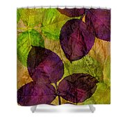 Rose Clippings Mural Wall Shower Curtain