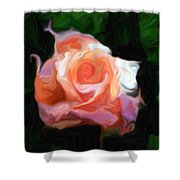 Rose Colored Shower Curtain