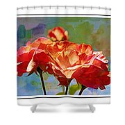 Rose Colours Shower Curtain
