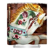 Rose Covered Pony Shower Curtain