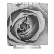 Rose Digital Oil Paint Shower Curtain