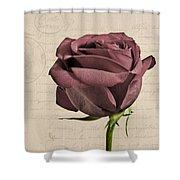 Rose En Variation - S02c3t3a Shower Curtain