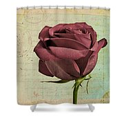 Rose En Variation - S23ct06 Shower Curtain