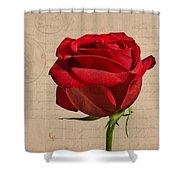 Rose En Variation - S2at03a Shower Curtain