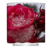 Rose Flakes 1 Shower Curtain