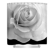 Rose Flower Macro Black And White Shower Curtain
