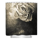 Rose From Another Day Shower Curtain