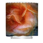 Rose Glows Shower Curtain