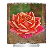 Rose Greeting Card Birthday Shower Curtain