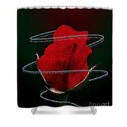 Rose In A Dark Shower Curtain
