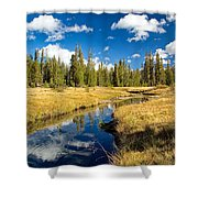 Rose Marie Shower Curtain