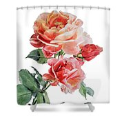 Watercolor Of Red Roses On A Stem I Call Rose Maurice Corens Shower Curtain