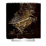 Rose Of Nature Shower Curtain