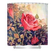 Rose On A Warm Day Shower Curtain