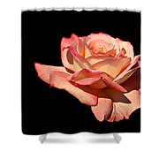 Rose On Black Background Shower Curtain