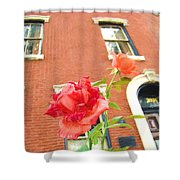 Rose On Brownstone Shower Curtain