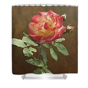 Rose On Thornridge Road Shower Curtain