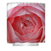 Rose Opening Shower Curtain