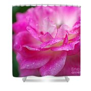 Rose Pink Shower Curtain