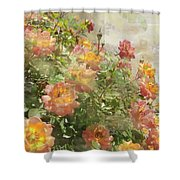 Rose Potpourri Shower Curtain