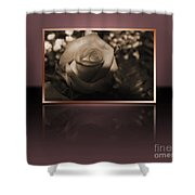Rose Reflection Shower Curtain