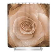 Rose Romance Shower Curtain