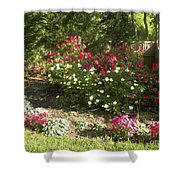 Rose Splender Shower Curtain