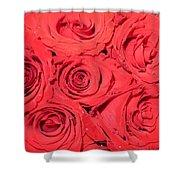 Rose Swirls Shower Curtain