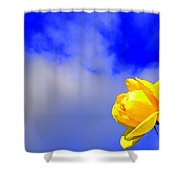 Rose To The Sky Shower Curtain