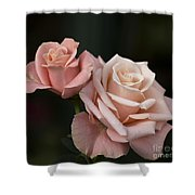 Rose Tombola 4 Of 4 Shower Curtain