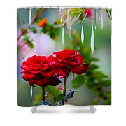 Rose Water Drops Shower Curtain