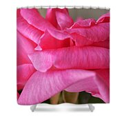 Roses Waves Shower Curtain