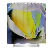 Rose Yellow Shower Curtain