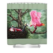 Roseate Spoonbill Nesters  Shower Curtain
