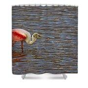 Roseatr Spoonbill   #4756 Shower Curtain
