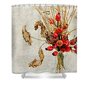 Rosehips And Grasses Shower Curtain
