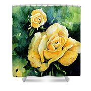 Roses 5 Shower Curtain by Hanne Lore Koehler