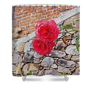 Roses Against The Wall Shower Curtain