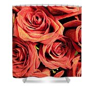 Roses For Your Wall  Shower Curtain