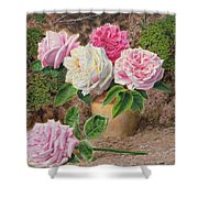 Roses In An Earthenware Vase By A Mossy Shower Curtain