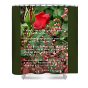 Roses In Heaven Shower Curtain