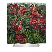 Roses In The Mountains Shower Curtain
