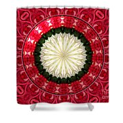 Roses Kaleidoscope Under Glass 19 Shower Curtain