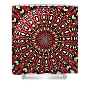 Roses Kaleidoscope Under Glass 21 Shower Curtain