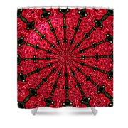 Roses Kaleidoscope Under Glass 24 Shower Curtain