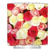 Roses Of Love Shower Curtain