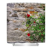 Roses On A Stone Wall Shower Curtain